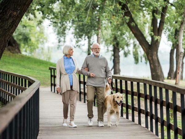 Older couple out walking their dog