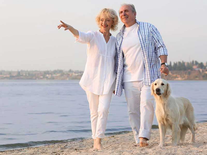 Couple walking on the beach with their dog